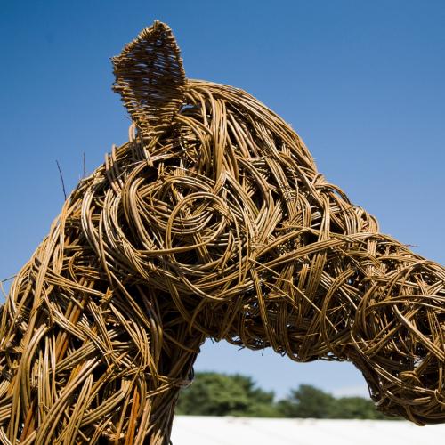 Horse-Head-1